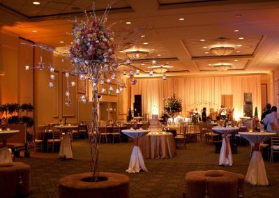 wedd_Carolina-Ballroom-lg
