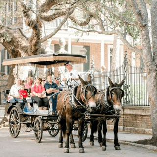 A horse drawn carriage rides through the street with a group of people enjoying the tour.